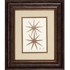 Propac Images Striking Starfish 2 Piece Framed Graphic Art Set