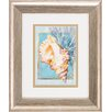 Propac Images Scallop Conch 2 Piece Framed Graphic Art Set