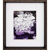 Propac Images Aubergine 2 Piece Framed Photographic Print Set