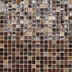 "Daltile City Lights 1/2"" x 1/2"" Mosaic Blend Field Tile in Bangkok"