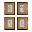 Sterling Industries Branch Studies 4 Piece Framed Graphic Art Set