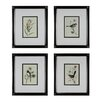 <strong>Sterling Industries</strong> Birds On A Branch 4 Piece Framed Graphic Art Set