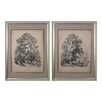 <strong>Sterling Industries</strong> Elm and Sycamore 2 Piece Framed Graphic Art Set