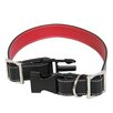 <strong>Royce Leather</strong> Small - Medium  Dog Collar