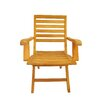 <strong>Anderson Teak</strong> Andrew Folding Armchair (Set of 2)