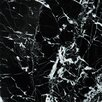 """Emser Tile Natural Stone 12"""" x 12"""" Marble Tile in Black and White"""