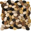 Emser Tile Natural Stone Flat Rivera Random Sized Pebble Unpolished Mosaic in 4 Color Blend