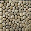 Emser Tile Natural Stone Rivera Random Sized Pebble Mosaic in Cream