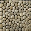 Emser Tile Natural Stone Rivera Random Sized Pebble Unpolished Mosaic in Cream