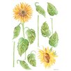 Euro Sunflowers Wall Decal