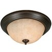 Wildon Home ® Rhyan Mount with Tea Stone Glass in Rubbed Bronze