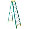 <strong>8' Fiberglass Step Ladder</strong> by Werner
