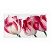 <strong>Home Décor Fresh Tulips Triptych 3 Piece Painting Print Set</strong> by Stupell Industries