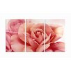 <strong>Stupell Industries</strong> Home Décor Pretty Flower Triptych 3 Piece Painting Print Set