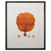 Mirror Image Home Tangerine Coral Giclee II Framed Graphic Art