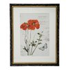 Winward Designs Botanic Framed Graphic Art