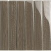 "Epoch Architectural Surfaces Brushstrokes 2"" x 12"" Glass Gloss Tile in Mushroom"