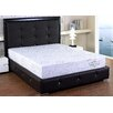 "AC Pacific Herbal Fusion 10"" Memory Foam Mattress"