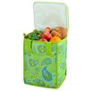 Picnic At Ascot Paisley Tall Insulated Cooler