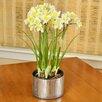 Picnic At Ascot Faux Daffodils