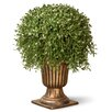 <strong>National Tree Co.</strong> Argentia Desk Top Plant with Urn