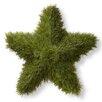 National Tree Co. Juniper Star Topiary Statue