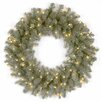 "National Tree Co. Douglas Pre-Lit 24"" Downswept Blue Fir Wreath"