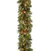 "National Tree Co. Pre-Lit 9' x 10"" Carolina Pine Garland"