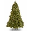National Tree Co. Douglas 6.5' Green Fir Artificial Christmas Tree with 650 Clear Lights and Stand