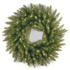"""National Tree Co. Dunhill Fir Pre-Lit 24"""" Wreath with 50 Clear Lights"""
