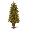 National Tree Co. Douglas 5' Green Fir Artificial Christmas Tree with 200 Clear Lights and Stand