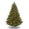 <strong>Douglas 9' Green Fir Artificial Christmas Tree with 700 Multi Light...</strong> by National Tree Co.