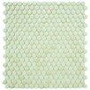 "<strong>Posh 5/8"" x 5/8"" Penny Round Porcelain Mosaic Wall Tile in Mint</strong> by EliteTile"
