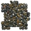 EliteTile Brook Random Sized Natural Stone Unpolished Mosaic in Tiger Eye