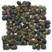 EliteTile Brook Stone Random Sized Unpolished Natural Stone Mosaic in Tiger Eye