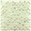 """<strong>Sierra 5/8"""" x 5/8"""" Polished Glass and Stone Mini Mosaic in Ming</strong> by EliteTile"""