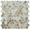 EliteTile Shore Natural Shell Mosaic Tile in Natural