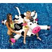 Swimline Laugh Out Loud Cow inflatable Ride On Pool Toy