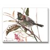Americanflat Yuhina Bird Painting Print on Canvas
