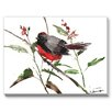 Americanflat State-Throated Redstart Painting Print on Canvas