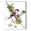 Americanflat Bullfinch 2 Painting Print on Canvas
