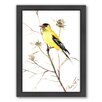 Americanflat Goldfinch 5 Framed Painting Print