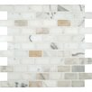 """MS International Calacatta Gold Mounted 2"""" x 1"""" Marble Mesh Polished Mosaic in White"""