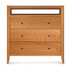 Copeland Furniture Dominion 3 Drawer Chest with Media Organizer Flush Mounted Top