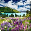West of the Wind Outdoor Canvas Art Lake Of Lupines Graphic Art