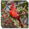 <strong>West of the Wind Outdoor Canvas Art</strong> Cardinal in Berries Photographic Print on Canvas
