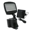 Pacific Accents 45 Light Solar Security Light