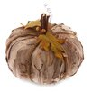 October Hill Medium Autumn Accent Bark Pumpkin Figurine