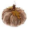 October Hill Medium Autumn Accent Bark Pumpkin