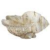 Woodland Imports Polystone Shell Figurine
